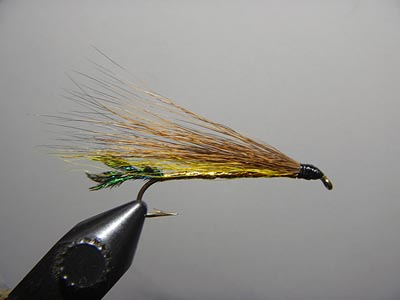 Golden Catskill Streamer